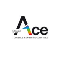 Logo ACE infolog